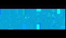 spacy Logo